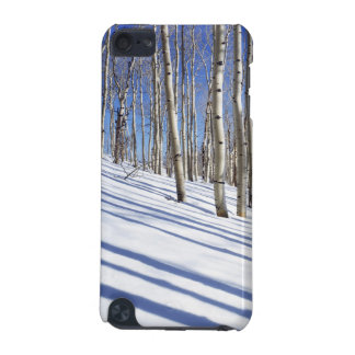 USA, Utah, Dixie National Forest, Aspen Grove iPod Touch (5th Generation) Cover