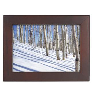 USA, Utah, Dixie National Forest, Aspen Grove Keepsake Box