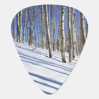 USA, Utah, Dixie National Forest, Aspen Grove Plectrum