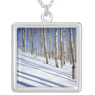 USA, Utah, Dixie National Forest, Aspen Grove Silver Plated Necklace