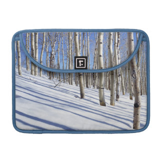 USA, Utah, Dixie National Forest, Aspen Grove Sleeve For MacBook Pro