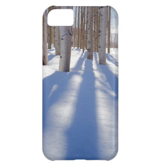 USA, Utah, Dixie National Forest, Aspens iPhone 5C Case