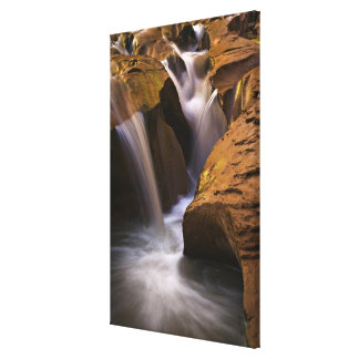 USA Utah Escalante Wilderness Waterfall in 2 Canvas Prints