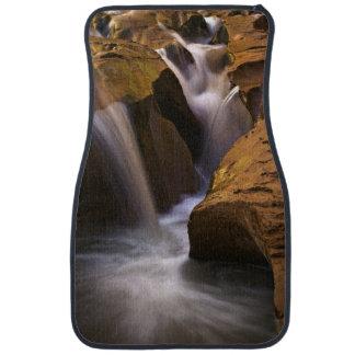 USA, Utah, Escalante Wilderness. Waterfall in 2 Car Mat