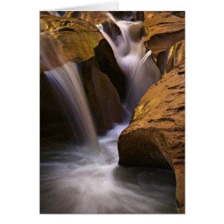 USA, Utah, Escalante Wilderness. Waterfall in 2 Card