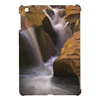 USA, Utah, Escalante Wilderness. Waterfall in 2 iPad Mini Case