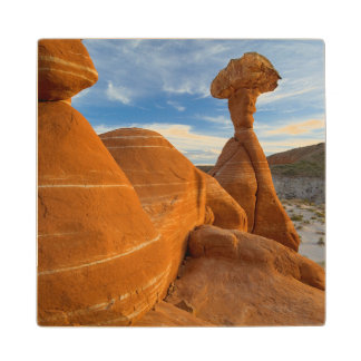 USA, Utah, Grand Staircase Escalante-National Wood Coaster
