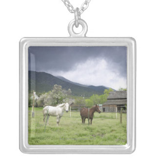 USA, Utah, Horses on ranch Silver Plated Necklace