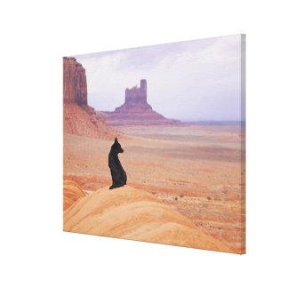 USA, Utah, Monument Valley, Dog sitting on rock Canvas Print