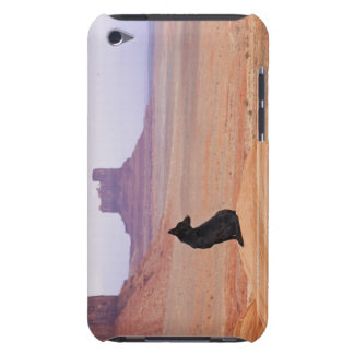 USA, Utah, Monument Valley, Dog sitting on rock iPod Touch Covers