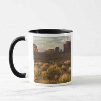 USA, Utah, Monument Valley National Park. Mug