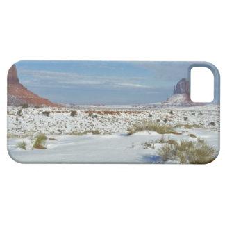 USA, Utah, Monument Valley. Sagebrush shows iPhone 5 Cases