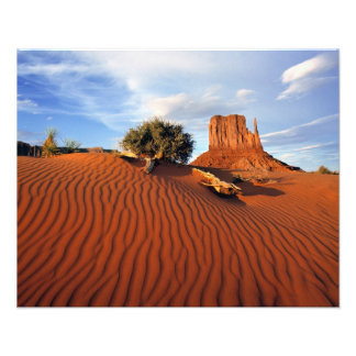 USA, Utah, Monument Valley. Wind creates Art Photo