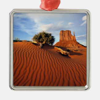 USA, Utah, Monument Valley. Wind creates Christmas Ornament