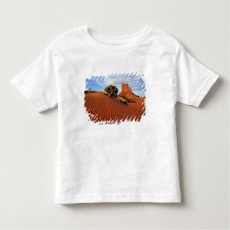 USA, Utah, Monument Valley. Wind creates T Shirts