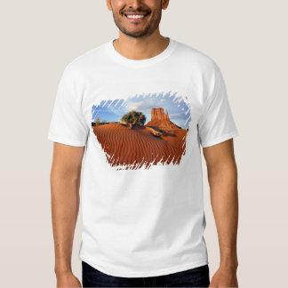 USA, Utah, Monument Valley. Wind creates Tshirts