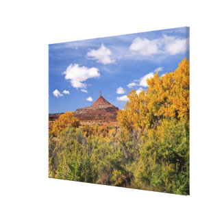 USA, Utah, near Canyonlands National Park on Canvas Prints