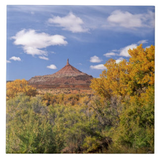 USA, Utah, near Canyonlands National Park on Large Square Tile