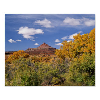 USA, Utah, near Canyonlands National Park on Poster