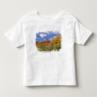 USA, Utah, near Canyonlands National Park on Tshirts
