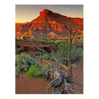 USA, Utah. Paria Canyon sandstone formation at Postcard