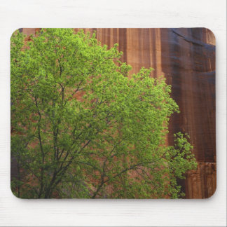 USA, Utah, Paria Canyon- Vermillion Cliffs Mouse Pad