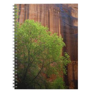 USA, Utah, Paria Canyon- Vermillion Cliffs Note Book