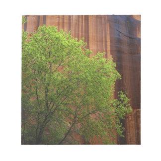 USA, Utah, Paria Canyon- Vermillion Cliffs Note Pad