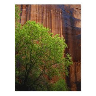 USA, Utah, Paria Canyon- Vermillion Cliffs Postcard