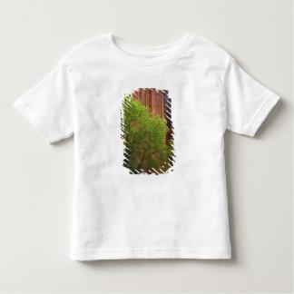 USA, Utah, Paria Canyon- Vermillion Cliffs T Shirts