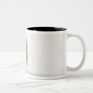 USA, Utah, Salt Lake City, Half shaved Golden Two-Tone Coffee Mug