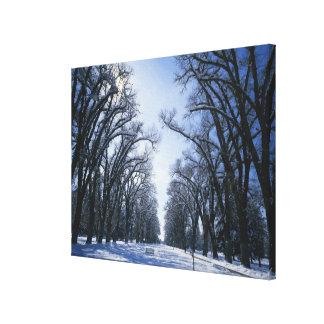 USA, Utah, Salt Lake City, Liberty Park, Stretched Canvas Print