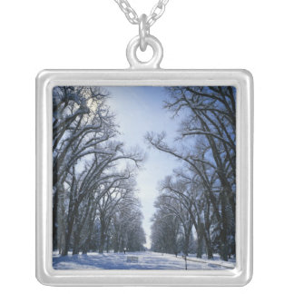 USA, Utah, Salt Lake City, Liberty Park, Silver Plated Necklace
