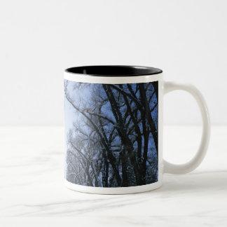 USA, Utah, Salt Lake City, Liberty Park, Two-Tone Coffee Mug