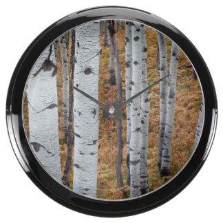 USA, Utah, Uinta-Wasatch-Cache National Forest 2 Aquavista Clock