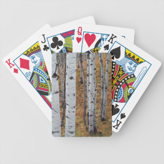 USA, Utah, Uinta-Wasatch-Cache National Forest 2 Bicycle Playing Cards