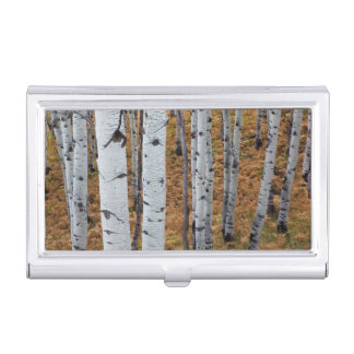 USA, Utah, Uinta-Wasatch-Cache National Forest 2 Business Card Holder