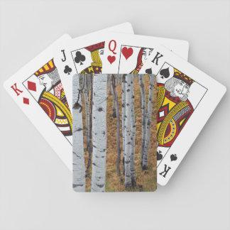 USA, Utah, Uinta-Wasatch-Cache National Forest 2 Card Decks