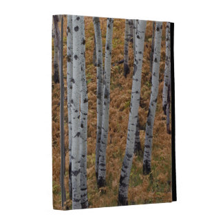 USA, Utah, Uinta-Wasatch-Cache National Forest 2 iPad Folio Cases