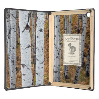 USA, Utah, Uinta-Wasatch-Cache National Forest 2 iPad Air Case