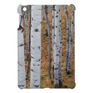USA, Utah, Uinta-Wasatch-Cache National Forest 2 Case For The iPad Mini