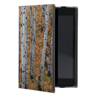 USA, Utah, Uinta-Wasatch-Cache National Forest 2 Covers For iPad Mini