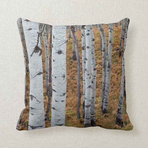 USA, Utah, Uinta-Wasatch-Cache National Forest 2 Throw Pillows