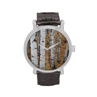 USA, Utah, Uinta-Wasatch-Cache National Forest 2 Wristwatches