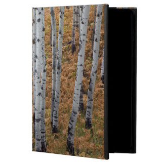 USA, Utah, Uinta-Wasatch-Cache National Forest 2 iPad Air Covers