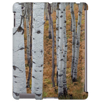 USA, Utah, Uinta-Wasatch-Cache National Forest 2 iPad Case