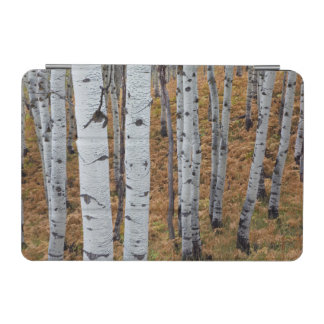 USA, Utah, Uinta-Wasatch-Cache National Forest 2 iPad Mini Cover