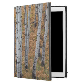 "USA, Utah, Uinta-Wasatch-Cache National Forest 2 iPad Pro 12.9"" Case"