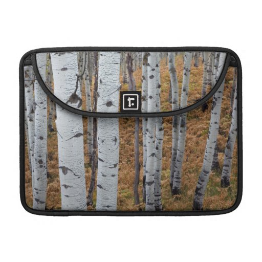 USA, Utah, Uinta-Wasatch-Cache National Forest 2 Sleeves For MacBook Pro