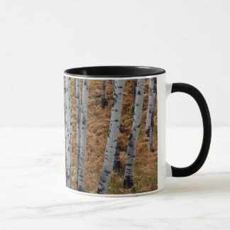 USA, Utah, Uinta-Wasatch-Cache National Forest 2 Mug